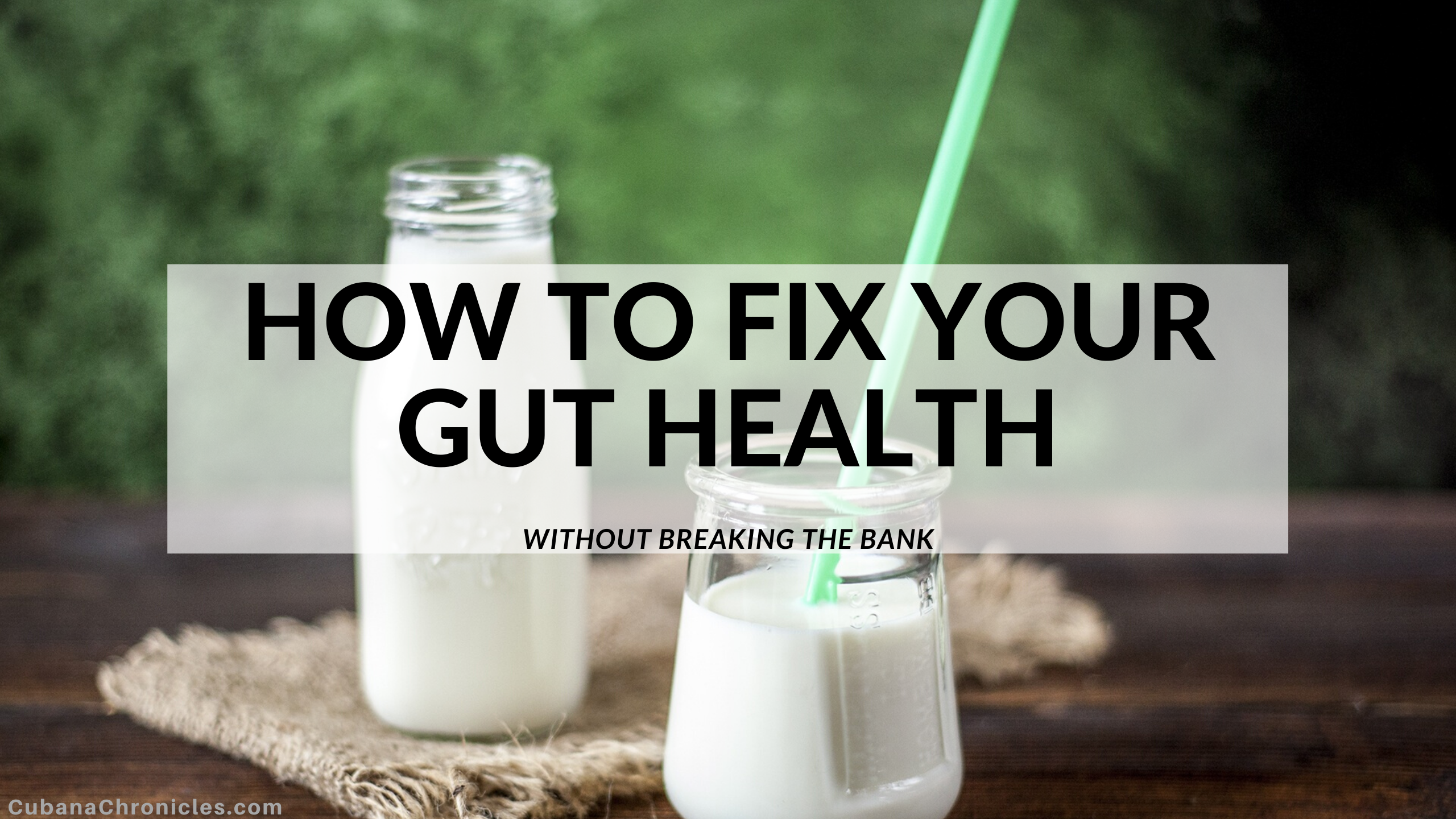 Cheaply Fix Your Gut Health Today
